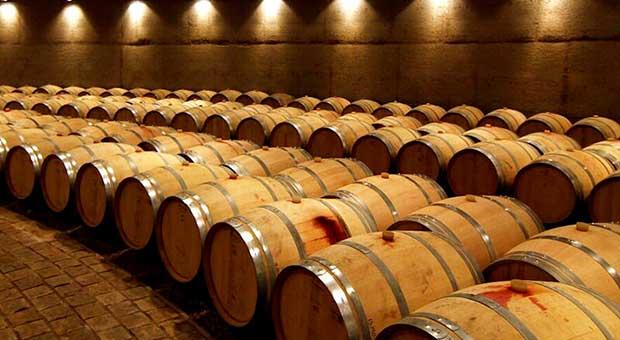 Wine Tour Mendoza Argentina