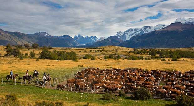 hotel-calafate-patagonia-argentina-travel-agency