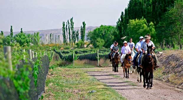 horse riding vineyard hotel mendoza argentina travel agency