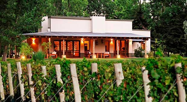 vineyard hotel mendoza argentina travel agent