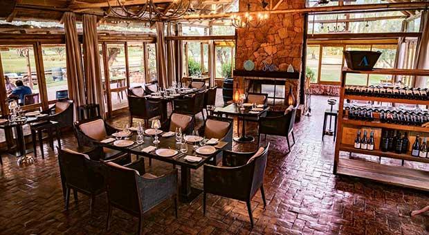 wine hotel restaurant mendoza argentina travel agency