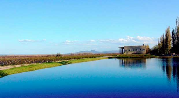 wine hotel view mendoza argentina travel agent