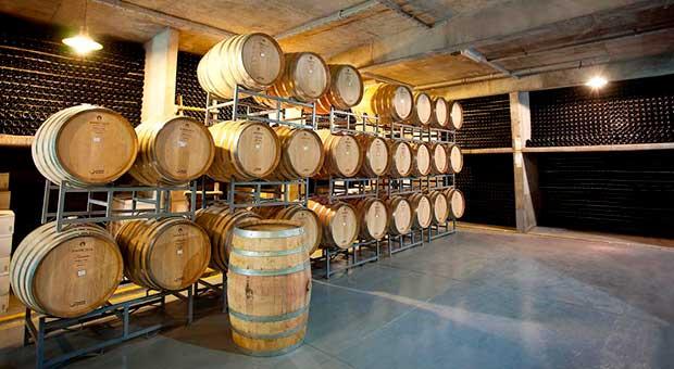 wine tasting mendoza hotel argentina travel agent
