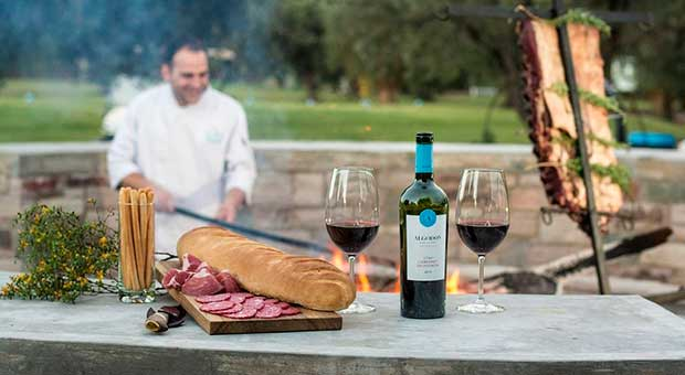 wine tasting vineyard hotel mendoza argentina travel agent