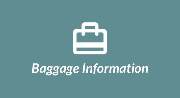Aerolineas Argentinas Baggage Information
