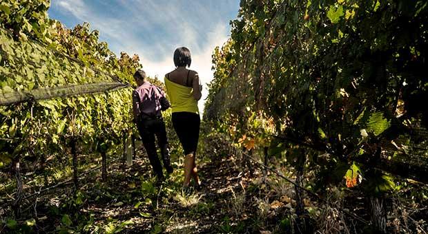 wine tour mendoza argentina travel agent