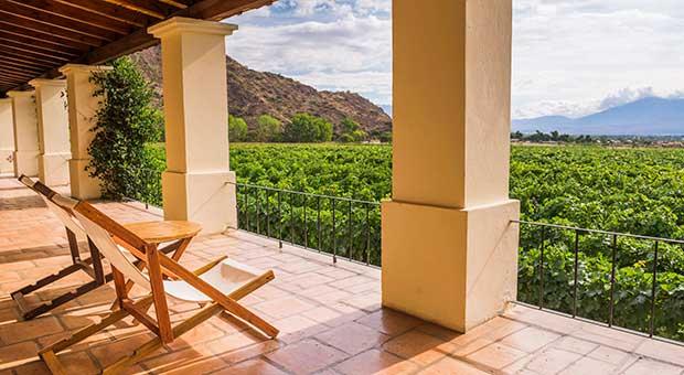 wine hotel salta argentina